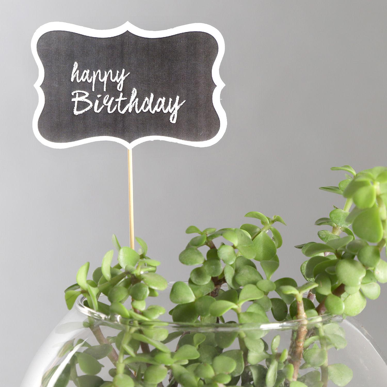 Shop Gift Plants Happy Birthday Jade Plant Terrarium